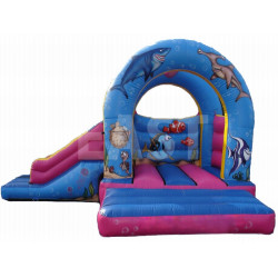 Sea Inflatable Bouncy Slide