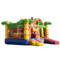 Multiplaylion Bounce House