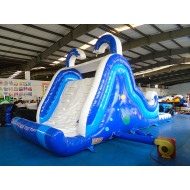 Backyard Inflatable Pool Slide